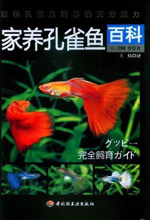家养孔雀鱼百科
