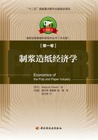 制浆造纸经济学—中芬合著造纸及其装备科学技术丛书