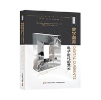 数字潮流:电子时代的艺术(Digital Currents:Art in the Electronic Age )(艺术与科学丛书)