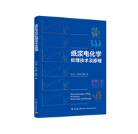 纸浆电化学处理技术及原理