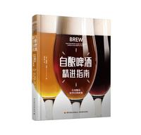 自酿啤酒精进指南