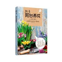 新手阳台养花