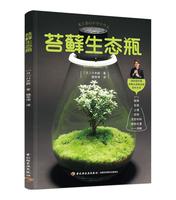 苔藓生态瓶